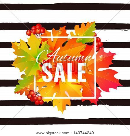 Autumn sale lettering orange, poster, discount, card
