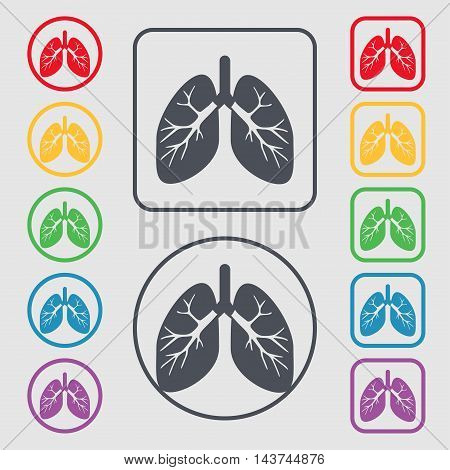 Lungs Icon Sign. Symbol On The Round And Square Buttons With Frame. Vector