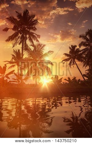 Kerala travel tourism background - Sunset on Kerala backwaters. Allepey, Kerala, India. Lens flare and light leak effect