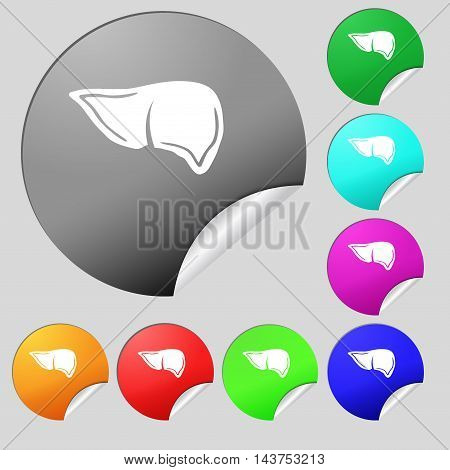 Liver Icon Sign. Set Of Eight Multi Colored Round Buttons, Stickers. Vector