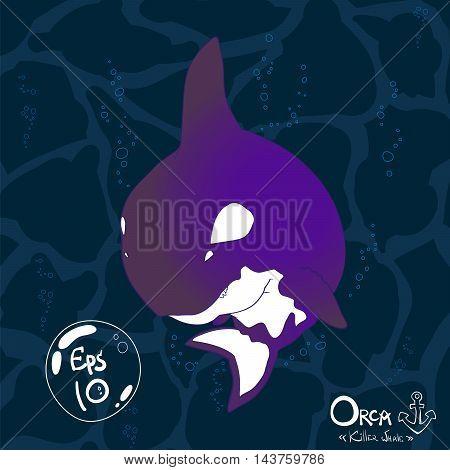 Orca, Killer Whale.