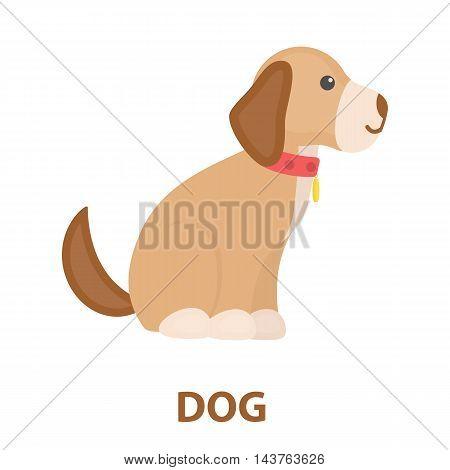 Sitting dog vector illustration icon in cartoon design