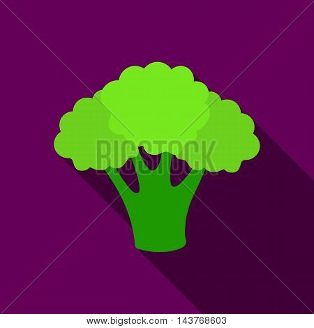 Broccoli icon flat. Singe vegetables icon from the eco food flat.