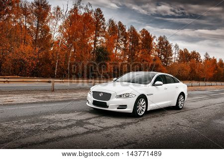 Saratov, Russia - October 16, 2014: Whtie Jaguar XJ car stand on wet asphalt road at daytime