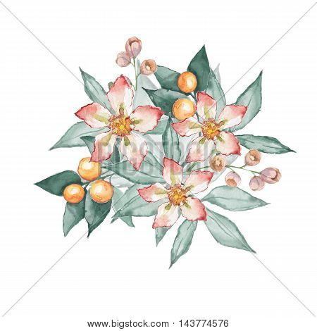Bouquet. Watercolor floral illustration. Hand drawn flowers and leaves