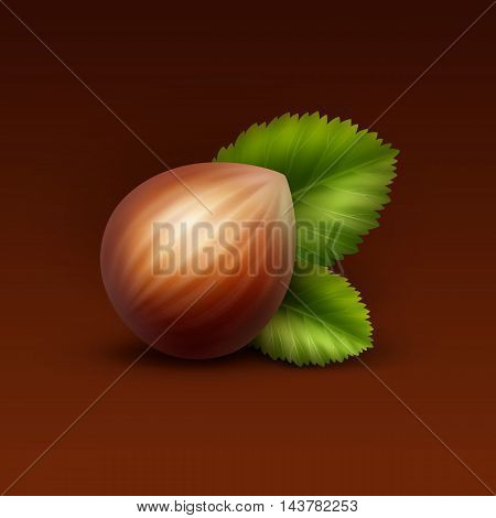 Vector Full Unpeeled Realistic Hazelnut with Leaves Close up Isolated on Brown Background