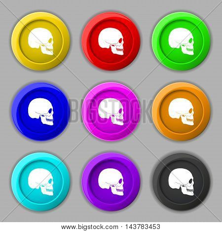 Skull Icon Sign. Symbol On Nine Round Colourful Buttons. Vector