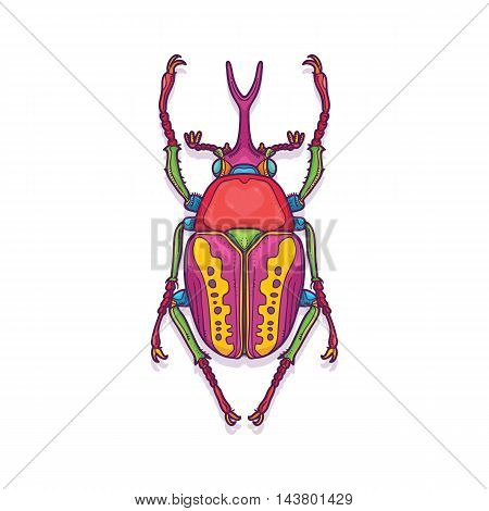 Vector Illustration of Colorful Scarab Beetle Bug Insect Hand Drawn, Megalorrhina harrisi procera