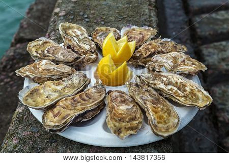 Plate with dozen oysters and a lemon on the parapet of the embankment Cancale France
