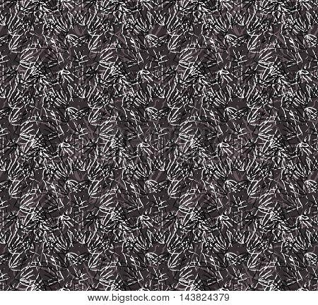 Kelp Seaweed Black And White Texture