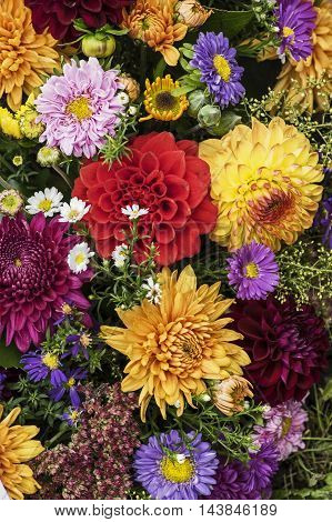 A bunch of flowers in several colors
