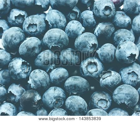 Blueberries, bog whortleberry, great bilberry as a background