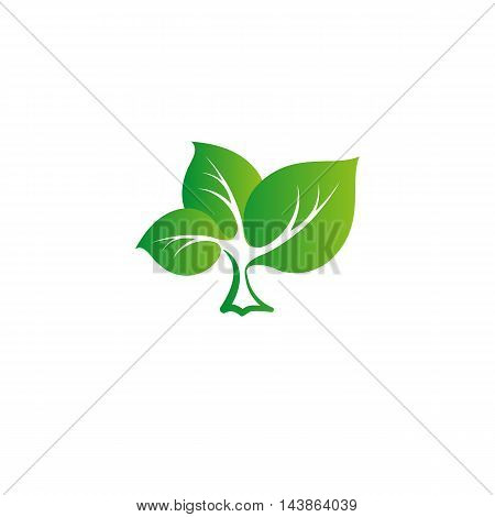 Isolated abstract green color tree vector logo. Leaves on a strong trunk of a plant. Organic products vector illustration