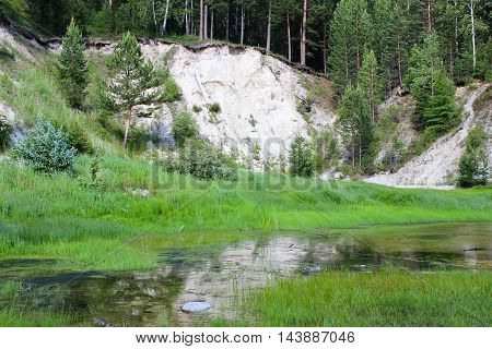 Mountain slope with trees and a small swamp
