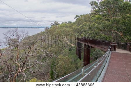 Elevated metal pedestrian bridge through the green tree tops at King's Park botanic gardens overlooking the Swan River on a stormy day in Perth, Western Australia.