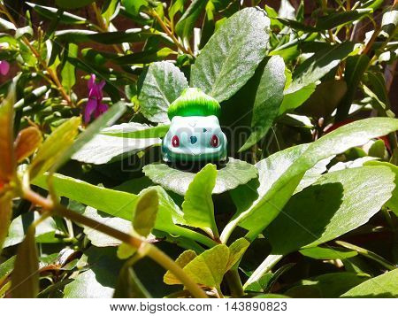 Nueva Esparta, Venezuela 21 august 2016. toy of caracter Bulbasaur from the anime pokemon on the grass looking like a real wild pokemon
