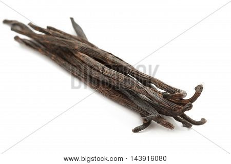 Organic dry sticks of Vanilla (Vanilla planifolia) isolated on white background. Macro close up. Front view.