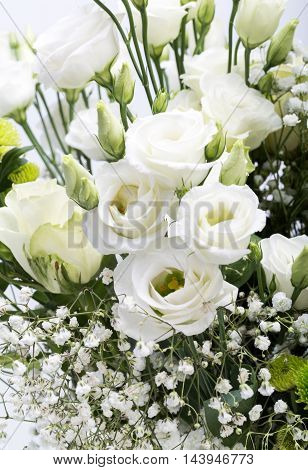 Close up of beauty white roses flowers