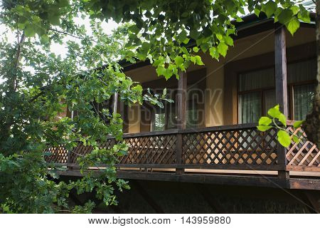 Summer verandah from a tree. Close leaves of trees.