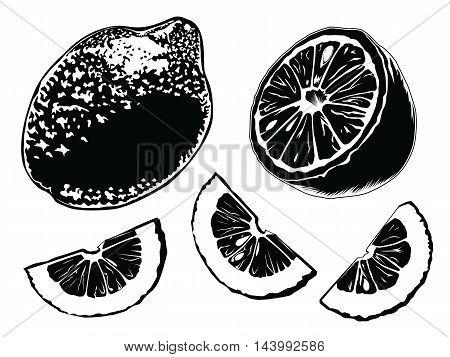 Lemon Set Black And White
