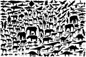 Diverse set of animal outlines (vector file also available) poster
