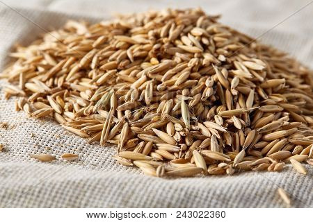 Pile Of Unpeeled Oat Grains On Homespun Tablecloth Background, Top View, Close-up, Macro, Selective