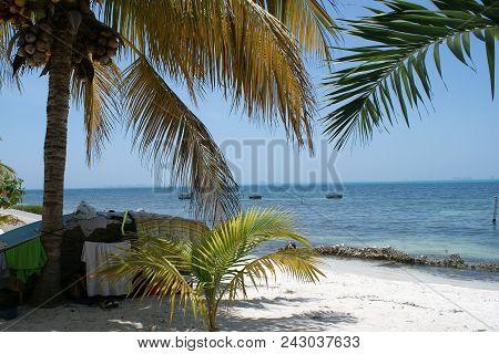 Tropical Island Getaways To Dreamy Paradise Beaches.