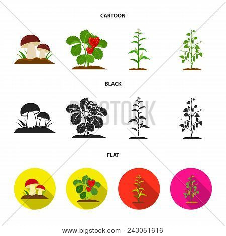 Mushrooms, Strawberries, Corn, Cucumber.plant Set Collection Icons In Cartoon, Black, Flat Style Vec