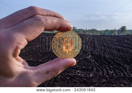 The Guy Is Holding Bitcoin At Dawn. Bitcoin Hands. One Bitcoin In The Hands