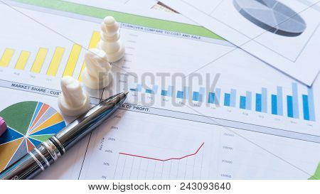 Business Report Statement With Graph And Data Analysis