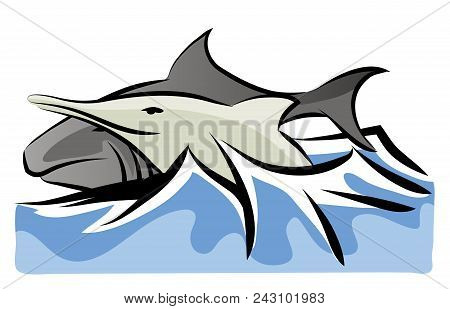 Shark And Dolphin.  Shark And Dolphin Swimming Together. Sea Life With Fishes.