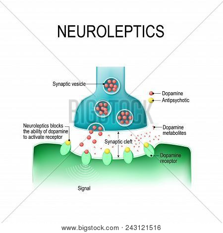 Dopamine And Antipsychotics. Neuroleptics Or Tranquilizers Are Medications That Use To Manage Psycho
