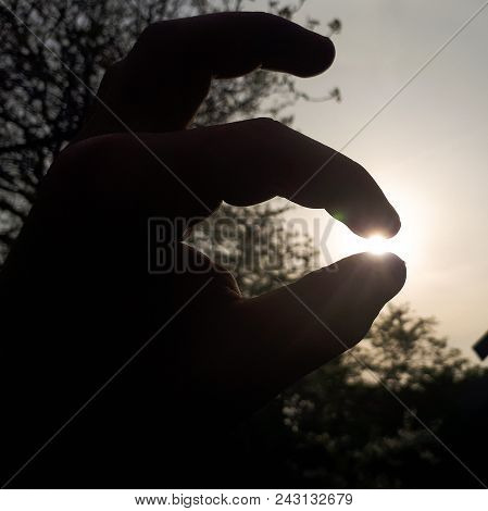 The Sun Between Fingers On Sunny Day