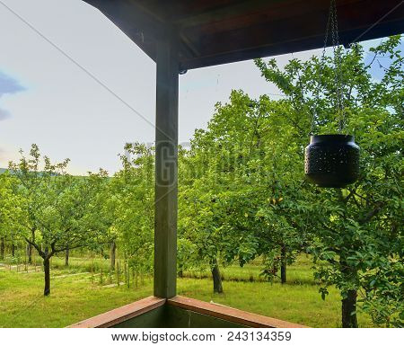 Small House Cabin Shed. Cute Summer Cabin In Rural Orchard.  Close-up.