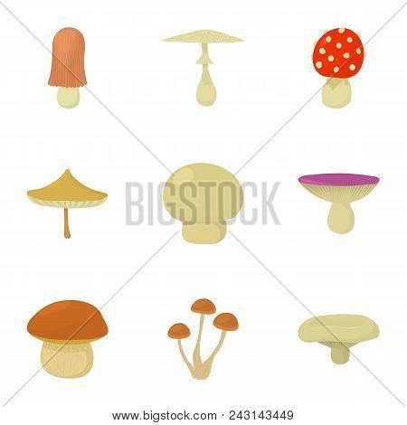 Mushroom Kingdom Icons Set. Cartoon Set Of 9 Mushroom Kingdom Vector Icons For Web Isolated On White