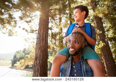 Father Walking In Woods Carrying Son On Shoulders