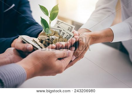 Hands Of Business Team Holding Plant Sprouting Growing From Golden Coins And Banknotes, Business Inv