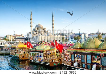 Istanbul, Turkey - October 6, 2015: View Of The Suleymaniye Mosque, Fishing Boats And Seal In Eminon