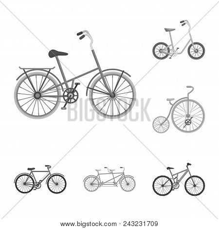 Various Bicycles Monochrome Icons In Set Collection For Design. The Type Of Transport Vector Symbol