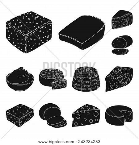 Different Kind Of Cheese Black Icons In Set Collection For Design.milk Product Cheese Vector Symbol
