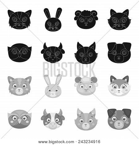 Owl, Cow, Wolf, Dog. Animal Muzzle Set Collection Icons In Black, Monochrome Style Vector Symbol Sto