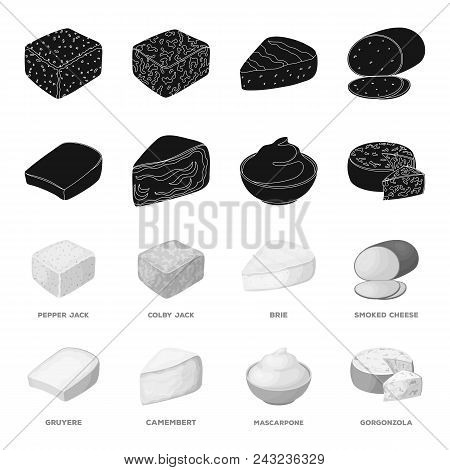 Gruyere, Camembert, Mascarpone, Gorgonzola.different Types Of Cheese Set Collection Icons In Black,