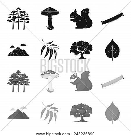 Mountain, Cloud, Tree, Branch, Leaf.forest Set Collection Icons In Black, Monochrome Style Vector Sy