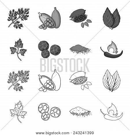 Ptrushka, Black Pepper, Paprika, Chili.herbs And Spices Set Collection Icons In Outline, Monochrome