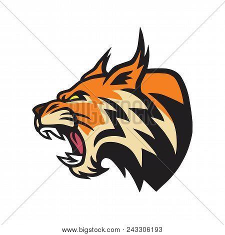 Lynx Wildcat Logo Mascot Vector Design Illustration