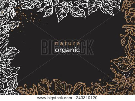Vector Floral Frame Of Natural Coffee Branch With Leaf, Flower, Bean. Fresh Organic Food Background.