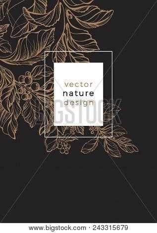 Graphic Invitation For Luxury Tropic Nature. Art Deco Design, Sketch Line, Organic Food, Medicinal D