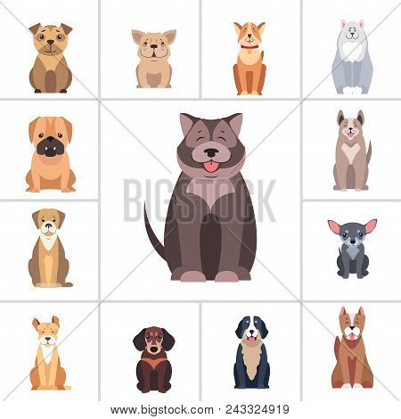 Cute Dogs Cartoon Icons Set. Happy Doggies Sitting With Smiling Muzzle And Hanging Out Tongue Flat V