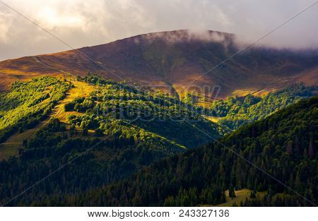 Low Clouds Above The Forested Hill In Sunlight. Beautiful Scenery Of Carpathian Borzhava Mountain Ri