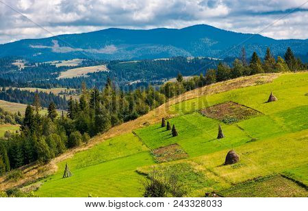 Hillside With Row Of Haystacks On Rural Field. Beautiful Summer Agriculture Scenery In Mountainous A